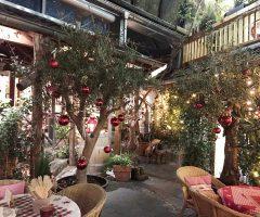 hofgarten-hof-weihnachten